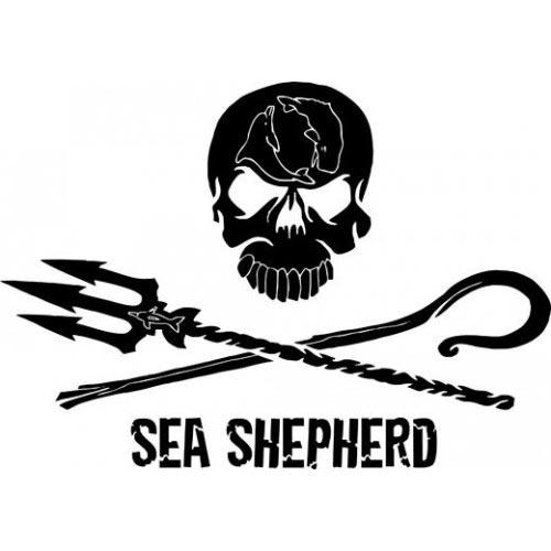 Sea Sheapard